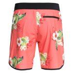 All Season Scallop DC Shoes Pink2